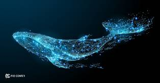 نهنگ معروف بیتکوین: چه زمانی بیتکوین بخرید؟!